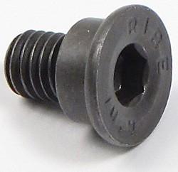 brake rotor retaining screw - 8879