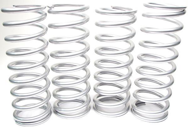 Terrafirma coil springs